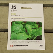 Thompson & Morgan National Trust Herb Rocket Wild Wasabi