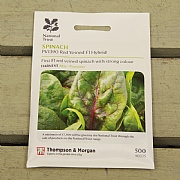Thompson & Morgan National Trust Spinach Pv1390 Red Veined F1 Hybrid