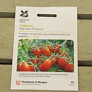 Thompson & Morgan National Trust Tomato Ship Saif1 Hybrid
