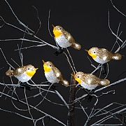 5 Acrylic LED Robins