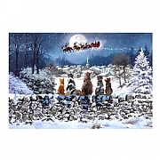 Large Cats Watching Santa LED Canvas