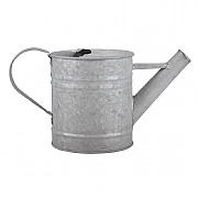 Fallen Fruits Old Zinc Watering Can 0.8L