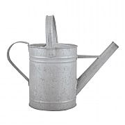 Fallen Fruits Old Zinc Watering Can 1.6L