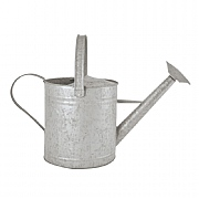 Fallen Fruits Old Zinc Watering Can 3.6L