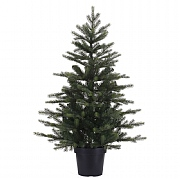 Everlands Grandis Potted Mini Tree 75cm