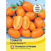 Thompson & Morgan Tomato Orange Beauty F1 Hybrid Seeds