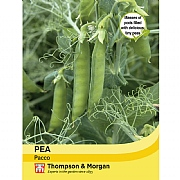 Thompson & Morgan Pea Pacco Seeds
