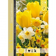 Tulip & Narcissus Combination Pack (15 Bulbs)