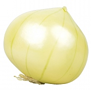 Fallen Fruits Artificial Onion