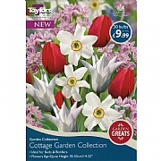 Cottage Garden Collection (50 Bulbs)