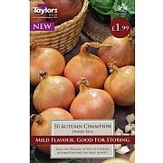 Onion Autumn Champion (50 Sets)