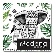 Pack of 4 Elephant Coasters
