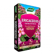 Westland Ericaceous Planting & Potting Mix 60L