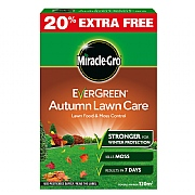 Evergreen Autumn Refill 100m2