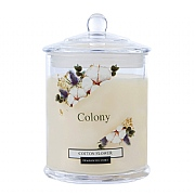 Wax Lyrical Colony Cotton Flower Jar Candle Small