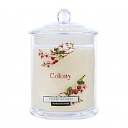 Wax Lyrical Colony Cherry Blossom Jar Candle Small