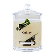 Wax Lyrical Colony Berry Picking Jar Candle Small
