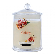 Wax Lyrical Colony Wild Honeysuckle Jar Candle Small