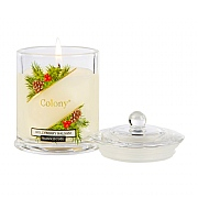 Colony Hollyberry Balsam Small Candle Jar