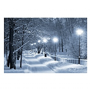 Lamplit Snowy Lane LED Canvas 40x30cm