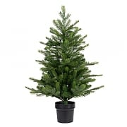 Everlands 3ft Grandis Fir Artificial Chrsitmas Tree