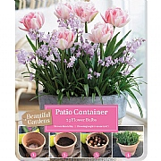 Tulip & Chionodoxa Patio Container Pack (30 Bulbs)