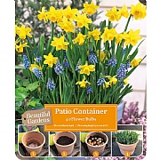 Narcissus & Muscari Patio Container Pack (30 Bulbs)