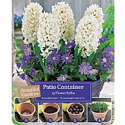 Hyacinth & Anemone Patio Container Pack (15 Bulbs)