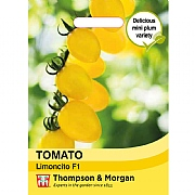 Thompson & Morgan Tomato Limoncito F1 Seeds