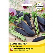 Thompson & Morgan Climbing Pea Purple Magnolia Seeds