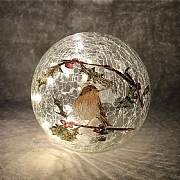 20cm LED Robin Crackle Ball Decorative Light