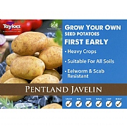 Pentland Javelin First Early Seed Potatoes (Bag of 15)