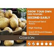 Gemson Second Early Seed Potatoes (Bag of 15)