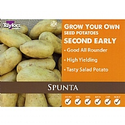 Spunta Second Early Seed Potatoes (Bag of 15)
