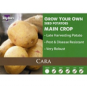 Cara Main Crop Seed Potatoes (Bag of 15)
