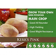 Kerr's Pink Main Crop Seed Potatoes (Bag of 15)