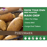 Performer Main Crop Seed Potatoes (Bag of 15)