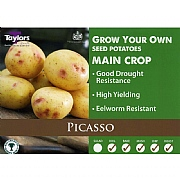 Picasso Main Crop Seed Potatoes (Bag of 15)