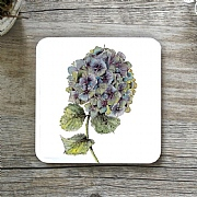 Toasted Crumpet Hydrangea Pure Single Coaster