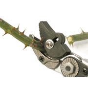 Burgon & Ball RHS Rose Pruner