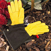 Gold Leaf Ladies Tough Touch Gloves