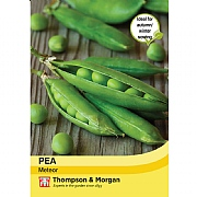 Thompson & Morgan Pea Meteor Seeds