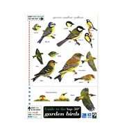 Field Guide to Garden Birds