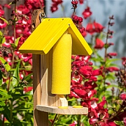 Wildlife World Butterfly & Bee Nectar Feeder