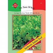 Thompson & Morgan The Taste of Italy Lattuga Riccia Verde Da Taglio