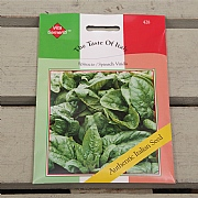 Thompson & Morgan The Taste of Italy Spinach Spinacio Viridis Olter (Merlo Nero)