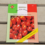 Thompson & Morgan The Taste of Italy Tomato Principe Borghese Da Appendere