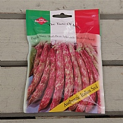 Thompson & Morgan The Taste of Italy Bush Bean Splendido Red
