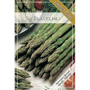 Asparagus Blacklim (Pack of 3)