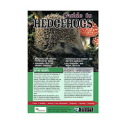 Guide To Hedgehogs